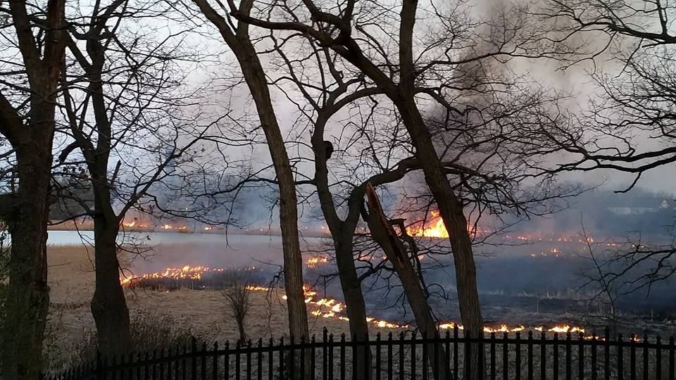 Brush fire burns for hours near Cedar Lake Bog in Lake Villa
