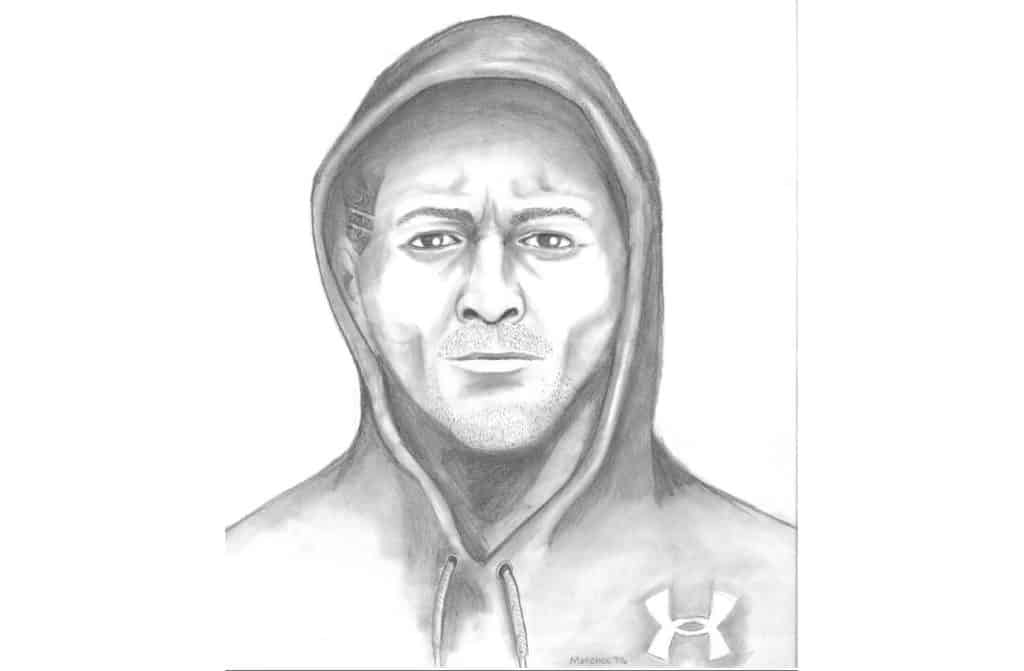 Police release sketch of man accused of sexual assault on wooded walking path in Gurnee