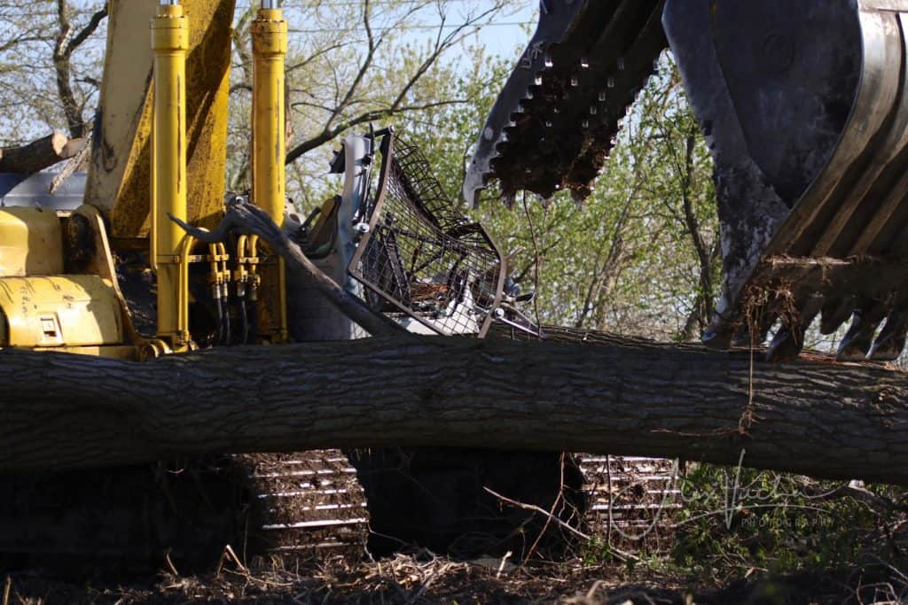 Coroner IDs man crushed to death after tree fell on excavator in Union