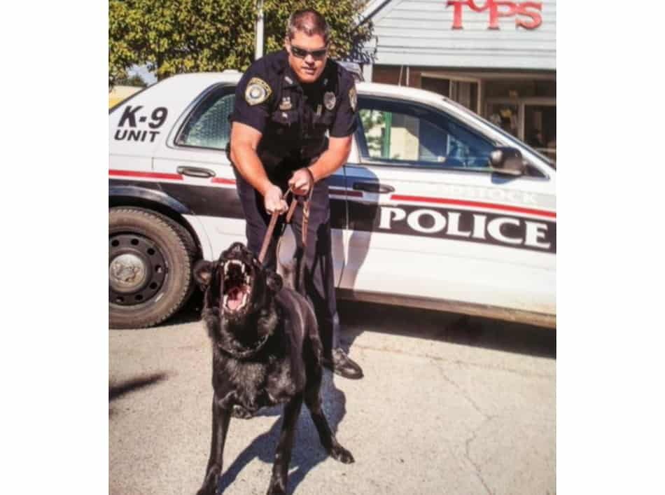 Retired Woodstock Police Department Canine Jax dies