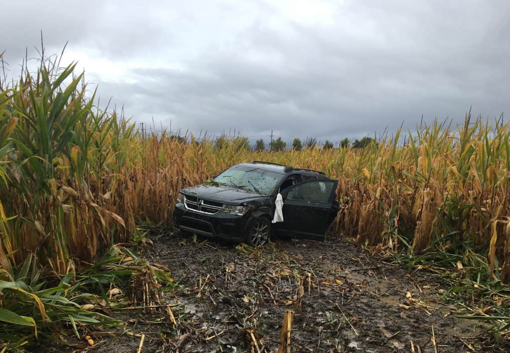 Man died of hemorrhage before driving off road into cornfield near Grayslake, coroner says