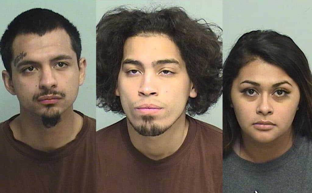 3 charged after woman beaten, robbed in Long Grove