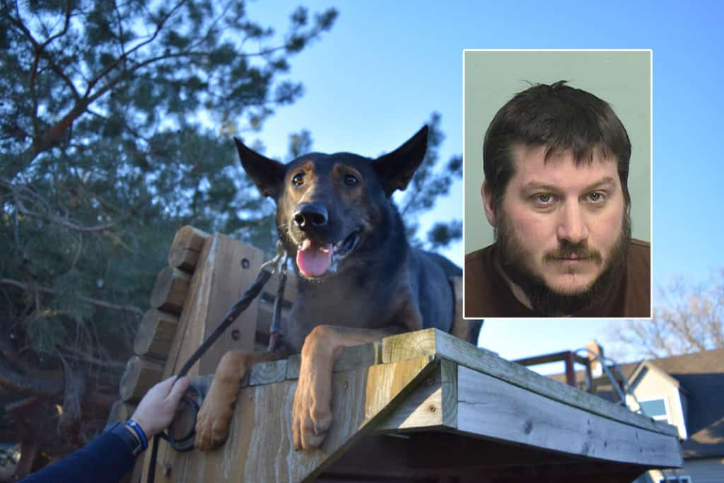 Man charged with striking Lake County sheriff's K-9, injuring deputy during burglary near McHenry