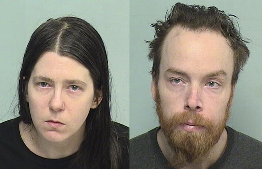 Man, woman charged after 5 dogs and 2 cats found dead in Fox Lake home