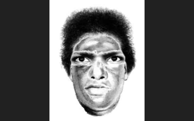 Police release sketch of man who robbed woman, tried to rape her at Lyons Woods in Waukegan