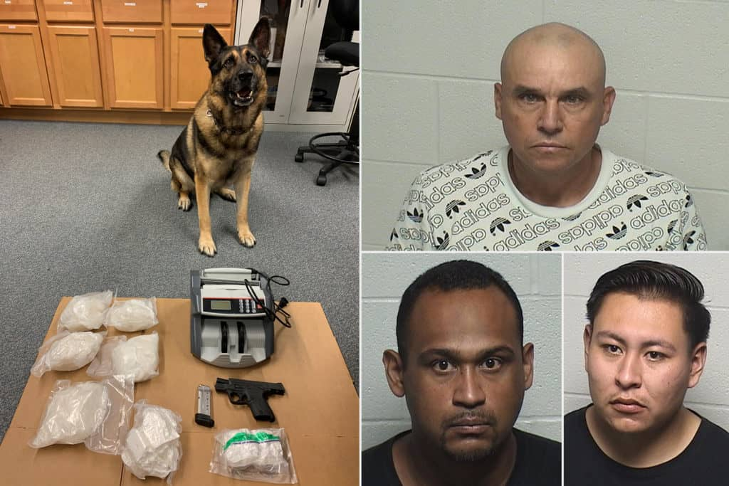 Lake County sheriff K-9 finds 5 pounds of meth during traffic stop in Beach Park