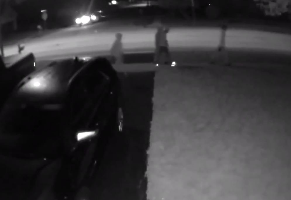 3 teens robbed at gunpoint, beaten by group of 8 suspects in Wauconda neighborhood