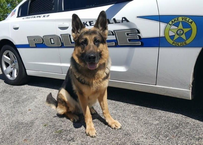 Retired Lake Villa Police Department K-9 dies