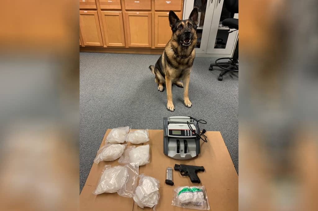 Lake County Special Investigations Group recovers record $3 million in drugs, 55 firearms in 2020