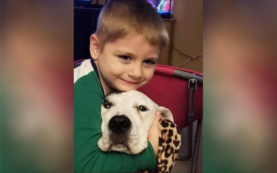 Missing 5-year-old boy found safe after going missing in Huntley